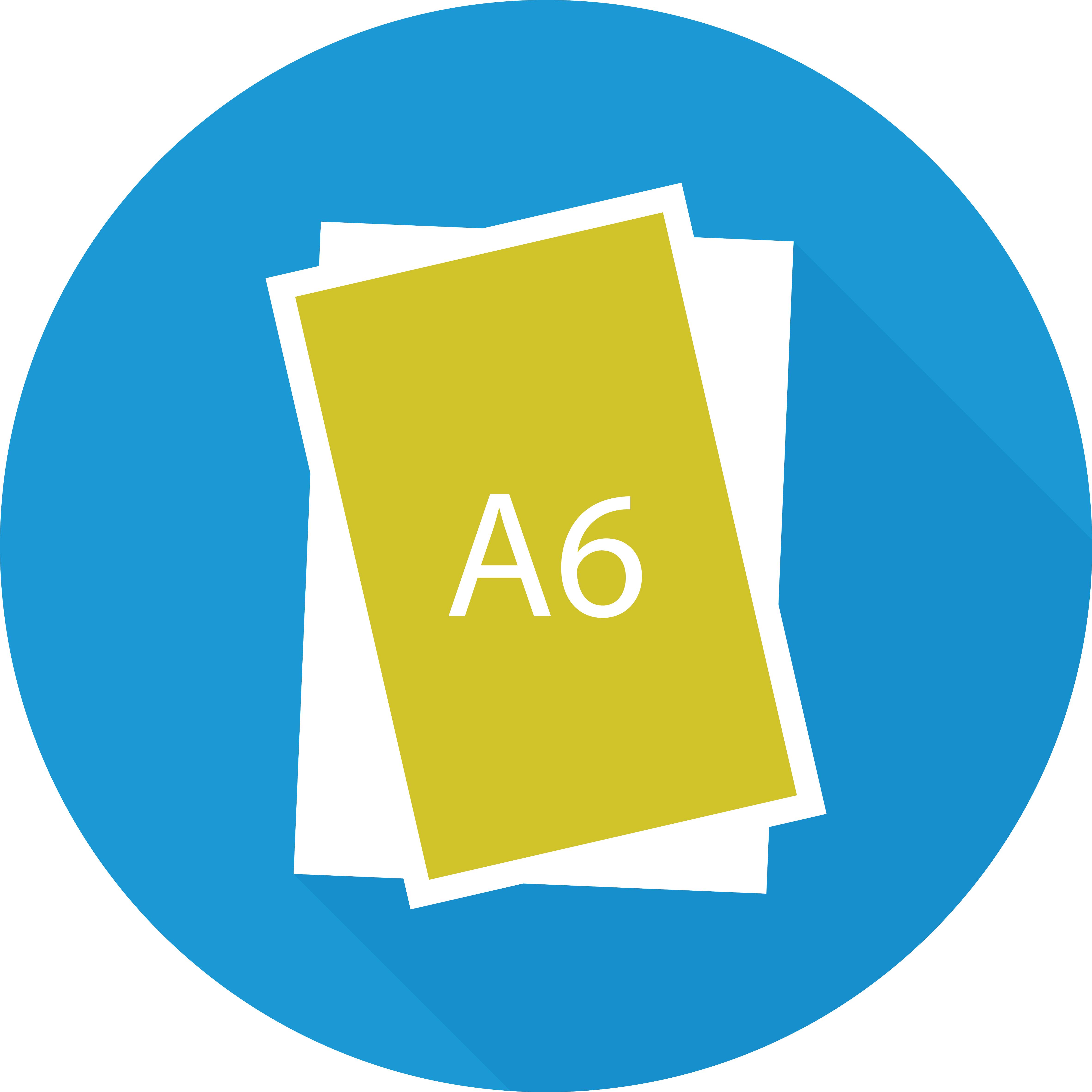A6-01 (1)